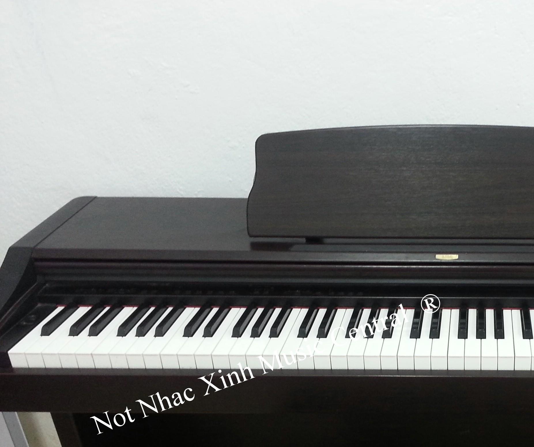 Đàn piano điện Korg C303