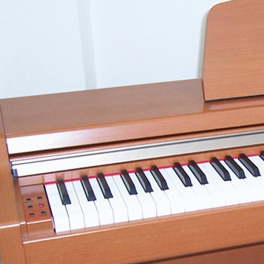 Đàn piano điện Kawai PN-2