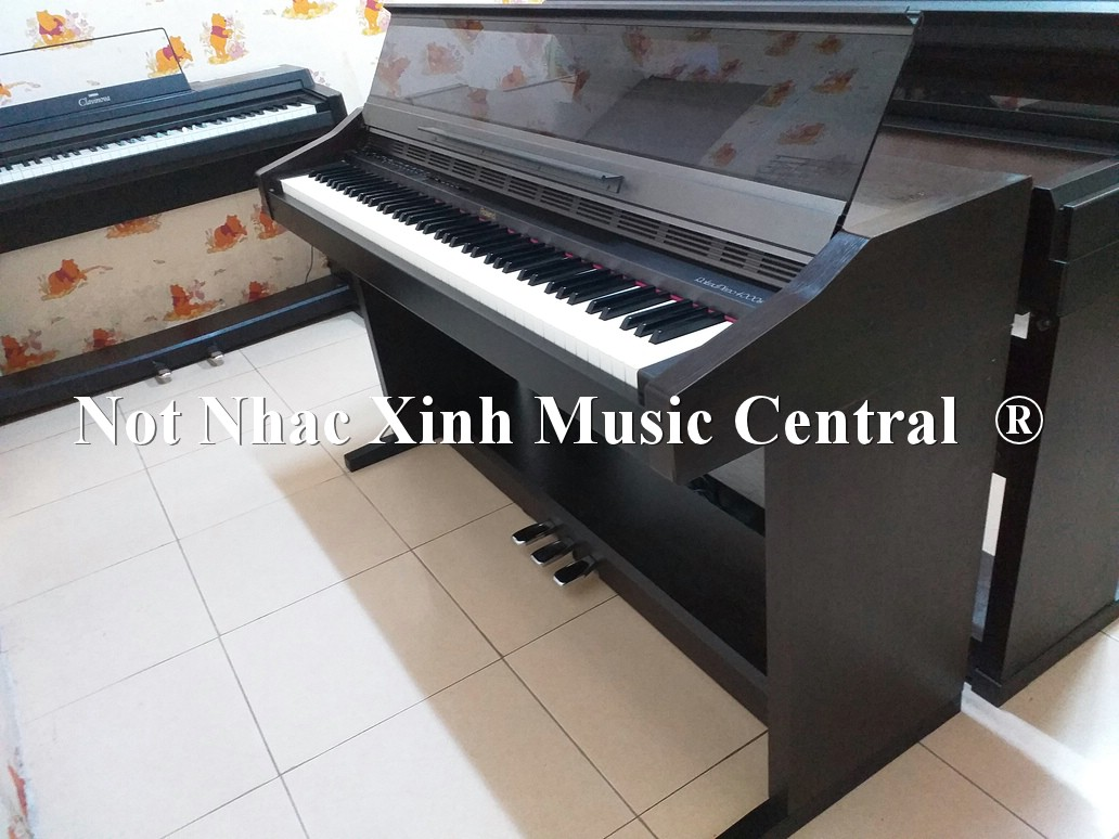 Đàn piano điện Roland HP-4000